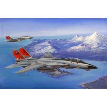 F-14D Super Tomcat 1/48