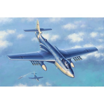 Sea Hawk MK 100-101 1/72