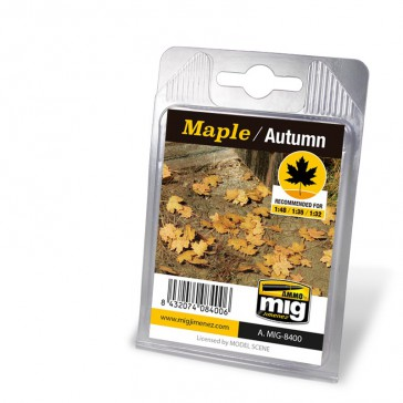 MAPLE - AUTUMN