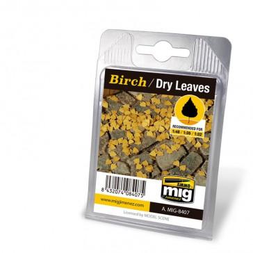 BIRCH - DRY LEAVES
