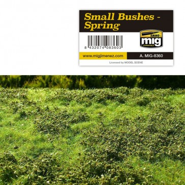 SMALL BUSHES SPRING