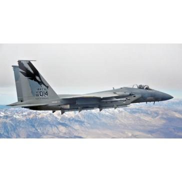 """F-15C """"California ANG 144th FW 1/72"""