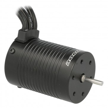 Razer ten Brushless Motor 3652 3000kV