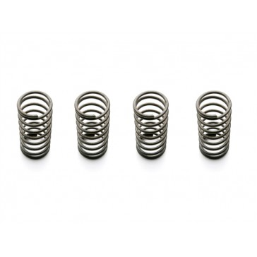 Battery Door Springs (4pcs)
