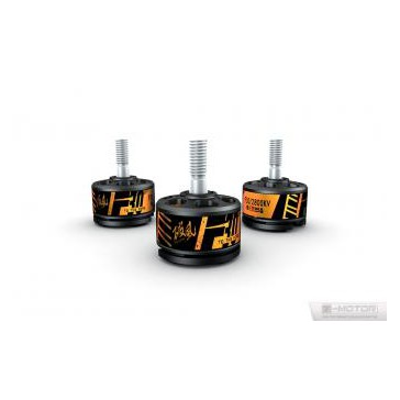 DISC.. Brushless Motors set (2pcs) F30 - 2800kv