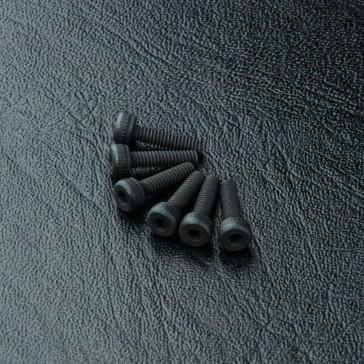 Cap screw M2X8 (6)