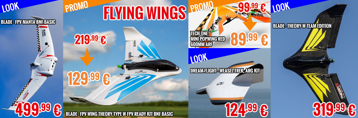 Flying wings !