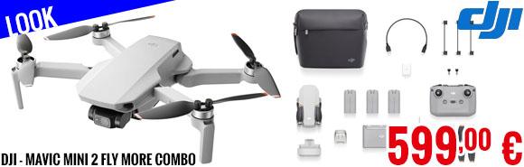 Look - DJI - MAVIC Mini 2 Fly More Combo